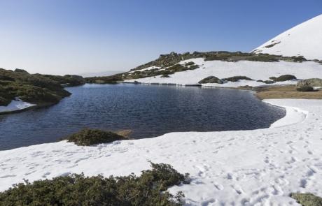 Laguna de Pinilla entre nieve
