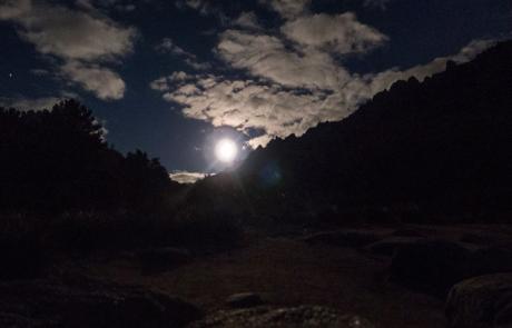 Pedriza nocturna