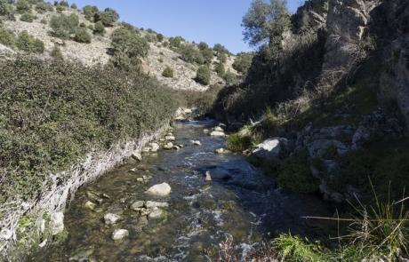 Arroyo de las dehesas