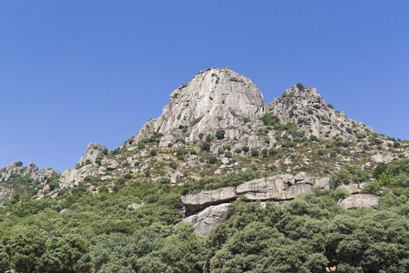 Pico de la Miel