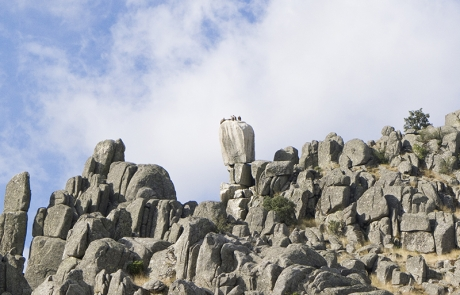 Roca del buitre