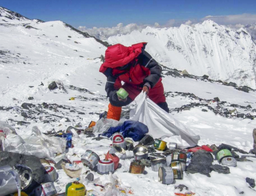 Montañismo ecológico